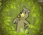 Het mooie beer Cindy is de vriendin van Yogi Beer