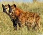 De hyena 's