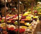 Bloemenmarkt, Amsterdam, Nederland
