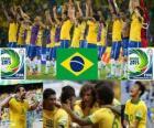 Brazilië Cup FIFA Confederations 2013