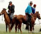 Xilingol paard van oorsprong uit Mongolië