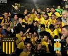 Peñarol van Montevideo, Kampioen First Division van het voetbal 2012-2013, Uruguay