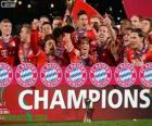 Bayern München, Kampioen Wereldkampioenschap voetbal voor clubs 2013