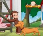 De aap George en Hundley worst dog