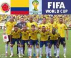 Selectie van Colombia, Groep C, Brazilië 2014