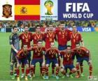 Selectie van Spanje, Groep B, Brazilië 2014