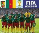 Selectie van Kameroen, Groep A, Brazilië 2014