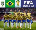 Selectie van Brazilië, Groep A, Brazilië 2014