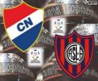 Club Nacional van Paraguay vs San Lorenzo de Almagro van Argentinië. Finale Copa Libertadores 2014