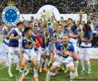 Cruzeiro kampioen 2014