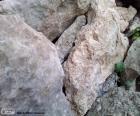 Stenen voor tuin