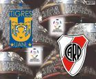 Finale Copa Libertadores 2015