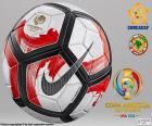 Nike Ordem Ciento de officiële bal voor de Copa América Centenario, Verenigde Staten 2016