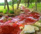 Landschap met een rode rivier