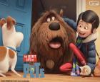 Max was verbaasd te zien zijn eigenaar Katie met Duke, bereiken een geadopteerde hond