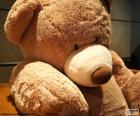 Grote Teddy beer