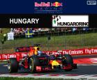 Daniel Ricciardo, derde in de Grand Prix van Hongarije 2016 met zijn Red Bull