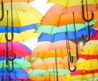 puzzel Paraplu van kleuren