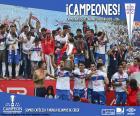 Universidad Católica, kampioen 2016