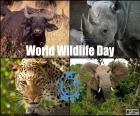 Werelddag van de dieren in het wild