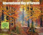 Internationale dag van de bossen