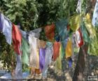 Tibetaanse gebedsvlag hebben hun oorsprong in de Himalaya, met schriftelijke Tibetaanse gebeden
