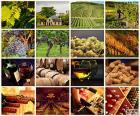 puzzel Wijn collage