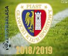 Piast Gliwice, kampioen 2018-2019