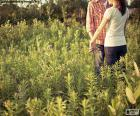 Paar in het veld