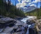 De rivier van het wildwater