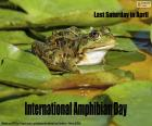 Internationale Amfibieëndag