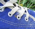 Blauwe schoen