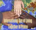 Internationale Dag van samenleven in vrede