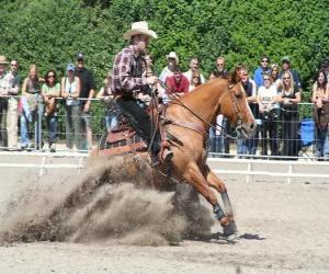 puzzel Reining - Western rijden - Ride Cowboy