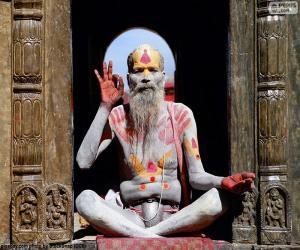 puzzel Religie in het India