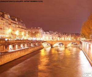 puzzel Rivier de Seine in de nacht, Parijs