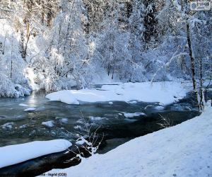 puzzel Rivier in de winter