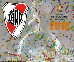puzzel Rivier, kampioen Libertadores 2018