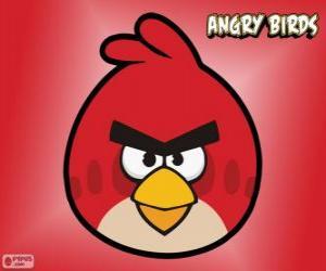 puzzel Rode Vogel (Red Bird)