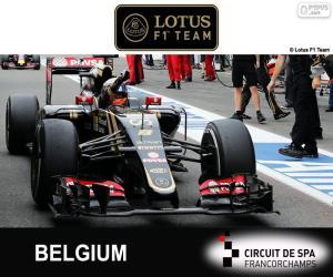 puzzel Romain Grosjean, GP België 2015