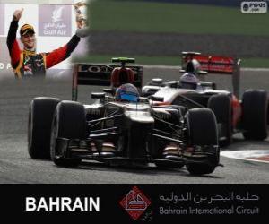 puzzel Romain Grosjean - Lotus - 2013 Grand Prix van Bahrein, 3e ingedeeld
