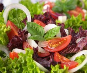 puzzel Salade