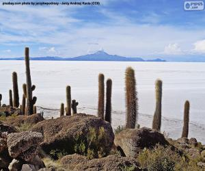 puzzel Salar de Uyuni, Bolivia