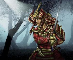 puzzel Samurai met traditionele kleding