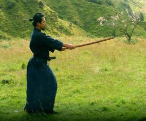 puzzel Samurai opleiding