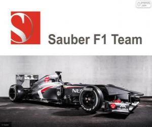 puzzel Sauber C32 - 2013 -