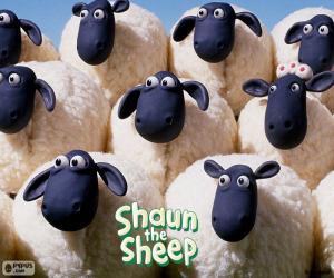 puzzel Schapen van de kudde van Shaun