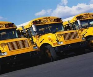puzzel Schoolbus parkeren