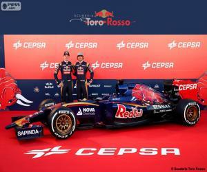puzzel Scuderia Toro Rosso 2015