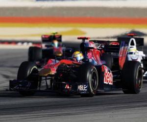 puzzel Sebastien Buemi - Toro Rosso - Bahrain 2010